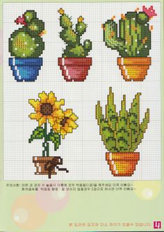 Çiçek kaktus Cactus Cross Stitch, Tiny Cross Stitch, Cross Stitch Bookmarks, Cross Stitch Borders, Cross Stitch Flowers, Modern Cross Stitch, Cross Stitch Kits, Cross Stitch Designs, Cross Stitching