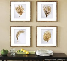 sea fan art print sea coral prints set of 4 beach wall decor sepia brown orange coastal art decor 8x10 gnosispicturearchive