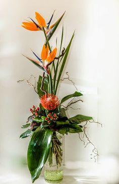 """""""Der Paradiesische"""" Exotisch - feurig - temperamentvoll.  Ein aufregender Hingucker für starke Persönlichkeiten.  onlineshop: http://deliv24.com/s-blumenmoenche  #Exotenstrauß #Strelitzien #Nadelkissen #onlineshop #Blumenzustellung #Floristik  EBK-Blumenmönche Blumenhaus – Google+"""