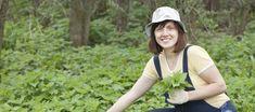 Ladda upp med skogens apotek – 4 ekologiska dunderkurer