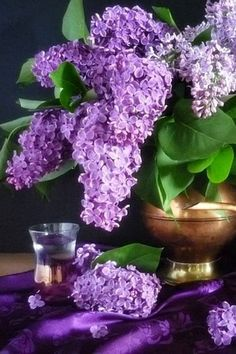 i heart lilacs for our weddings in the Caribbean                                                                                                                                                     More