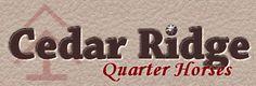 Cedar Ridge, Grullablue, grullo, grulla, blue roan, quarter horses, AQHA, reining, Hancock, Blue Valentine, Hollywood Dunit, Topsail