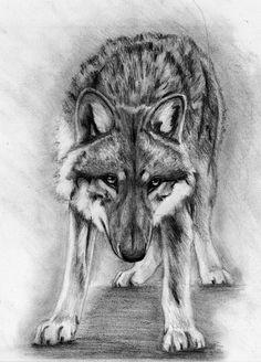 Wolf (tattoo) by AkumaDemonOfNight