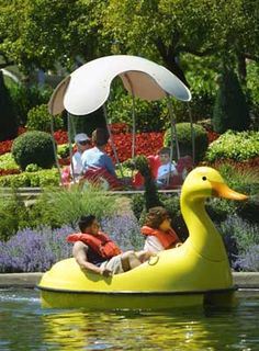 You could spend a week at Gilroy Gardens and still not see everything!
