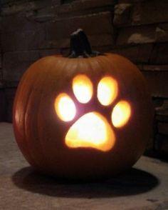Cute Pumpkin Carving, Disney Pumpkin Carving, Dog Pumpkin, Pumpkin Carving Templates, Carving Pumpkins, Halloween Pumpkin Carvings, How To Carve Pumpkins, Pumpkin Carving Stencils Easy, Pumpking Carving