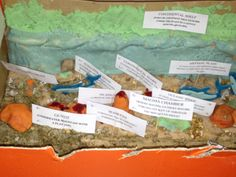 model of the ocean floor for earth science