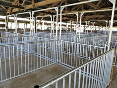 Livestock committee installs new pig pens thanks to donors County Fairgrounds, Pig Pen, Beaver Dam, Livestock, Farming, Wisconsin, Pens, Thankful