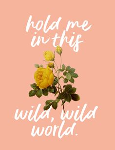 Warmth // Bastille Bastille Songs, Bastille Quotes, Bastille Band, Music X, Music Stuff, Will Farquarson, Sing Me To Sleep, Punks Not Dead, Song Quotes