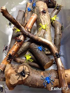 Spiders, sticks-could add cutting string and pop sticks from Rachel Tuff Spot, Eyfs Activities, Nursery Activities, Incy Wincy Spider Activities, Minibeasts Eyfs, The Very Busy Spider, Dragon Fly Craft, Preschool Garden, Spider Crafts