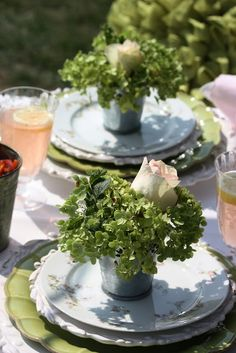 SUMMER PICNIC with simple herb individual place decor...