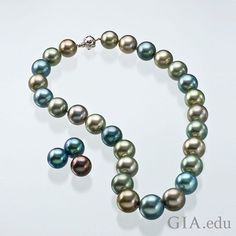Tahitian cultured #pearls are the product of the saltwater Pinctada margaritifera oyster, which is native to the islands of French Polynesia. The mollusk produces pearls in colors sometimes described in the trade with names like aubergine, pistachio or peacock. What's your favorite Tahitian cultured pearl color? Photo: Robert Weldon/GIA. Courtesy: A Private Collector and Mona Lee Nesseth, Custom Estate Jewels