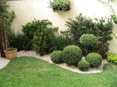 Jardín interior 2