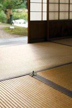 weeds   Yoshihiro Suda   wood carving