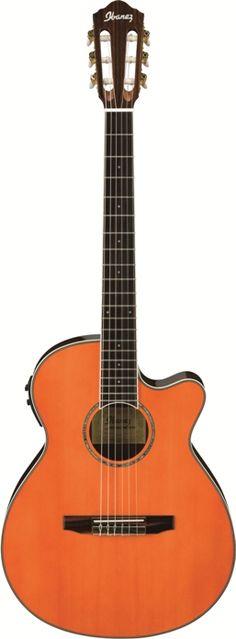 Ibanez AEG10NIITNG Acoustic Guitar