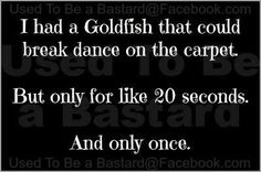 Breakdance goldfish