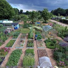 Our permaculture plot in June is the best place! You can see the no dig kitchen garden, cottage garden to the right, green house, pond, hugelbed and our young food forest at the back. (There's more on the design on my website if you're interested).