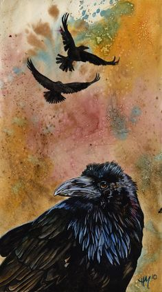 ☆ Heart of Black Feathers :¦: By Heather (Schumacher) Meuser ☆