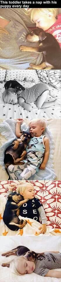 This toddler takes a nap with his puppy every day.