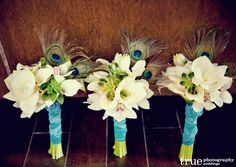 Peacock feather bouquets....with this one you could do dark purple or teal dresses