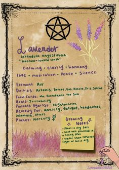 lavendulamoon — I use Lavender ALOT in my magick. In case it. Witchcraft Spell Books, Wiccan Spell Book, Green Witchcraft, Wiccan Spells, Pagan Witch, Witches, Magic Spells, Magic Herbs, Herbal Magic