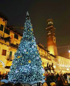 Christmas in Italy!  Photo credit @perryy65 #Christmas #ChristmasTree #ChristmasTrees #Love #Treeoftheday #christmas_around_the_world #MerryChristmas #verona #Italy