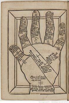 Titre :  Die Kunst Ciromantia  Auteur :  Hartlieb, Johann  Éditeur :  Jörg Schapf (Augsburg)  Date d'édition :  1490-1495  XYLO-41  Folio 290v