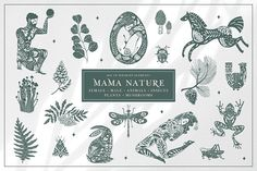 Mama Nature. Kit of wildlife element by Stellar_bones on @creativemarket