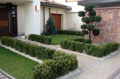 Ogród minimalistyczny - Tajemniczy Ogród Garden Modern, Garden Landscaping, Garden Ideas, Sidewalk, Landscape, Front Yard Landscaping, Scenery, Modern Gardens, Side Walkway