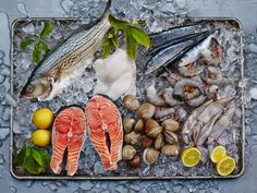 How to Grill Fish : Food Network - FoodNetwork.com
