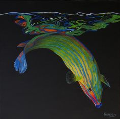 "Oil painting titled ""Fish Reflections I - Wrasse"" (first of a five piece series), done on a 20"" x 20"" x 1.5"" canvas.  SOLD"