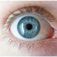 Close up of a human iris - Eye color - Wikipedia, the free encyclopedia Pretty Eyes, Beautiful Eyes, People With Blue Eyes, Blue Eye Color, Eye Colors, Color Azul, Light Blue Eyes, Eye Parts, Aesthetic Eyes