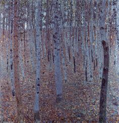 Klimt, beech wood - just like the aspens out west :)