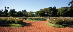Bosques de Palermo / Rosedal - Palermo. Este inmenso espacio verde es ideal para practicar deportes e ir de picnic o a tomar mate con tus amigos. Podés recorrerlo caminando, o en bici o skate, y si querés probar algo nuevo, animate a pedalear sobre el agua con un paseo en bicicleta acuática por los lagos que cruzan el parque.