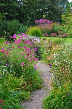i'm drawn to pinks and purples.  Love the winding path too.  Makes you want to follow it :)