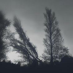 Eerie landscape by Winkelkanu