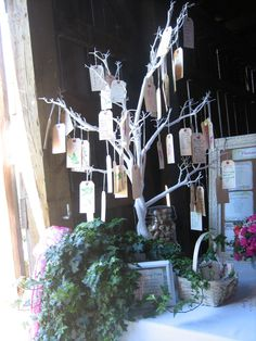 Green-Eyed Girl Productions: Destry & Cory: A Beautiful Journey- Blue Rooster Well Wishes Tree Tags, Mason Jar, White Tree. Tree Wedding, Wedding Wishes, Wedding Guest Book, Wedding Bells, Wedding Stuff, Wedding Ideas, Girl With Green Eyes, D Day, Ladder Decor