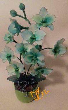 Zöld #orchidea#