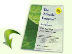 "Serrapeptase e-Book. The ""Miracle"" Enzyme is Serrapeptase - The 2nd Gift From Silkworms, is written by Robert Redfern, ""The Serrapeptase Guy.""  The book gives readers the opportunity to find out more about Serrapeptase - the enzyme that is now plant grown and harvested in vats. This 34 page ebook also highlights reports and studies by medical professionals concerning its effectiveness.   Get your free copy today! #Serrapeptase #ebook #enzyme"
