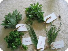 16+ things to do with too many herbs