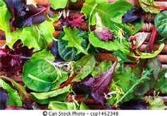 Yum... I'd Pinch That! | Copycat Wendy's Chicken/Pecan Salad