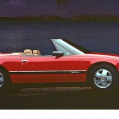 It's now 2015 and that means that a fresh crop of automobiles are now 25 years old. This renders them antiques. Automotive News, 25 Years Old, Say Hello, Meant To Be, Automobile, Fresh, Antiques, Car, Antiquities