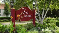 Pin De Wren Michaels En Fox Hound 2 Pinterest