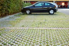 Permeable Pavement: a pavement structure that supports stormwater infiltration through a stone drainage layer and an underdrain system. They are best suited for locations that do not experience high traffic activity, such as sidewalks, parking areas, and driveways.