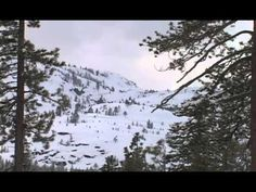 The Donner Party - YouTube.  This is so sad.