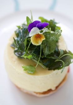 Posh Cheese on Toast – aka Parmesan Cream on Tomato and Olive Toast with Edible Flower Salad | Eggs On The Roof