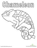 This chameleon coloring page is a great segue into talking to your child about this fascinating reptile.