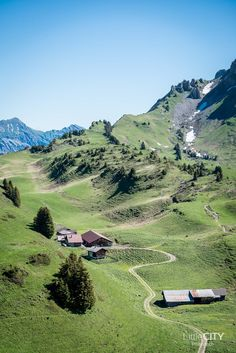 Switzerland Wonderland - Big love for the swiss mountains in Berner Oberland, Schynige Platte