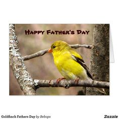 Goldfinch Fathers Day Card