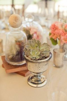 Explore wedding and shower inspiration like this Achieve an Organic Wedding with Succulents from international wedding experts, like undefined. Succulent Centerpieces, Cactus Y Suculentas, Cool Plants, Planting Succulents, Succulent Plants, Event Styling, Garden Inspiration, Wedding Inspiration, Indoor Plants