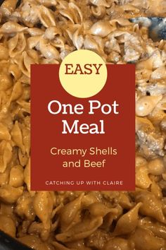 One Pot Meal #6: Creamy Tomato Shells and Beef - Catching Up With Claire
